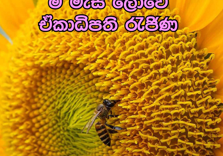 1.sanrakshana vol 5-1-min
