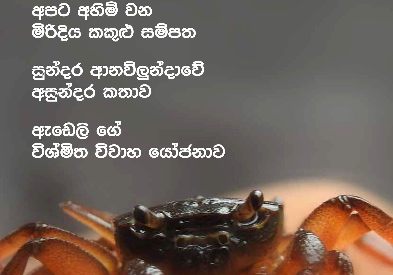 4.sanrakshana vol 5-3