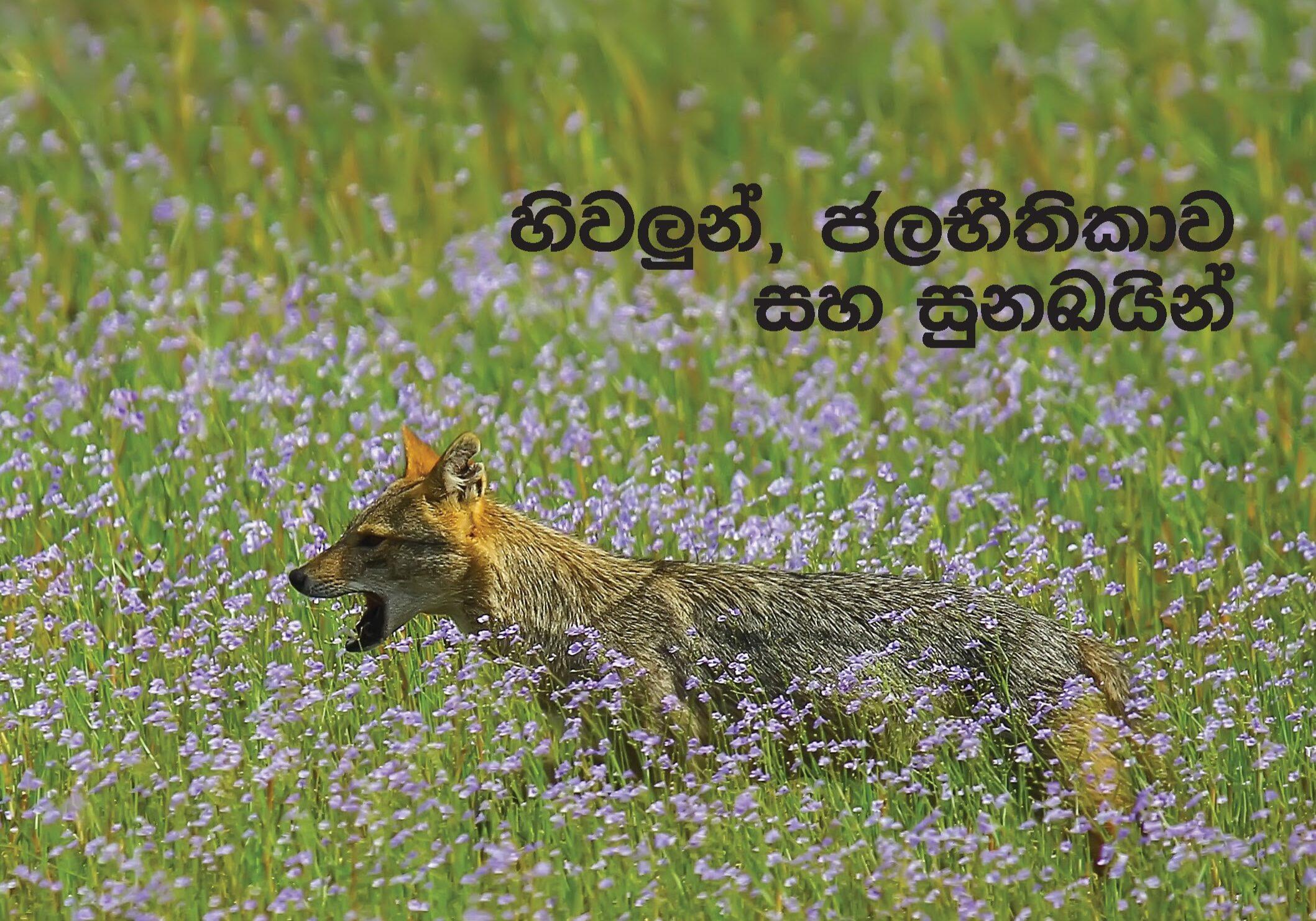 Sanrakshana 06-04
