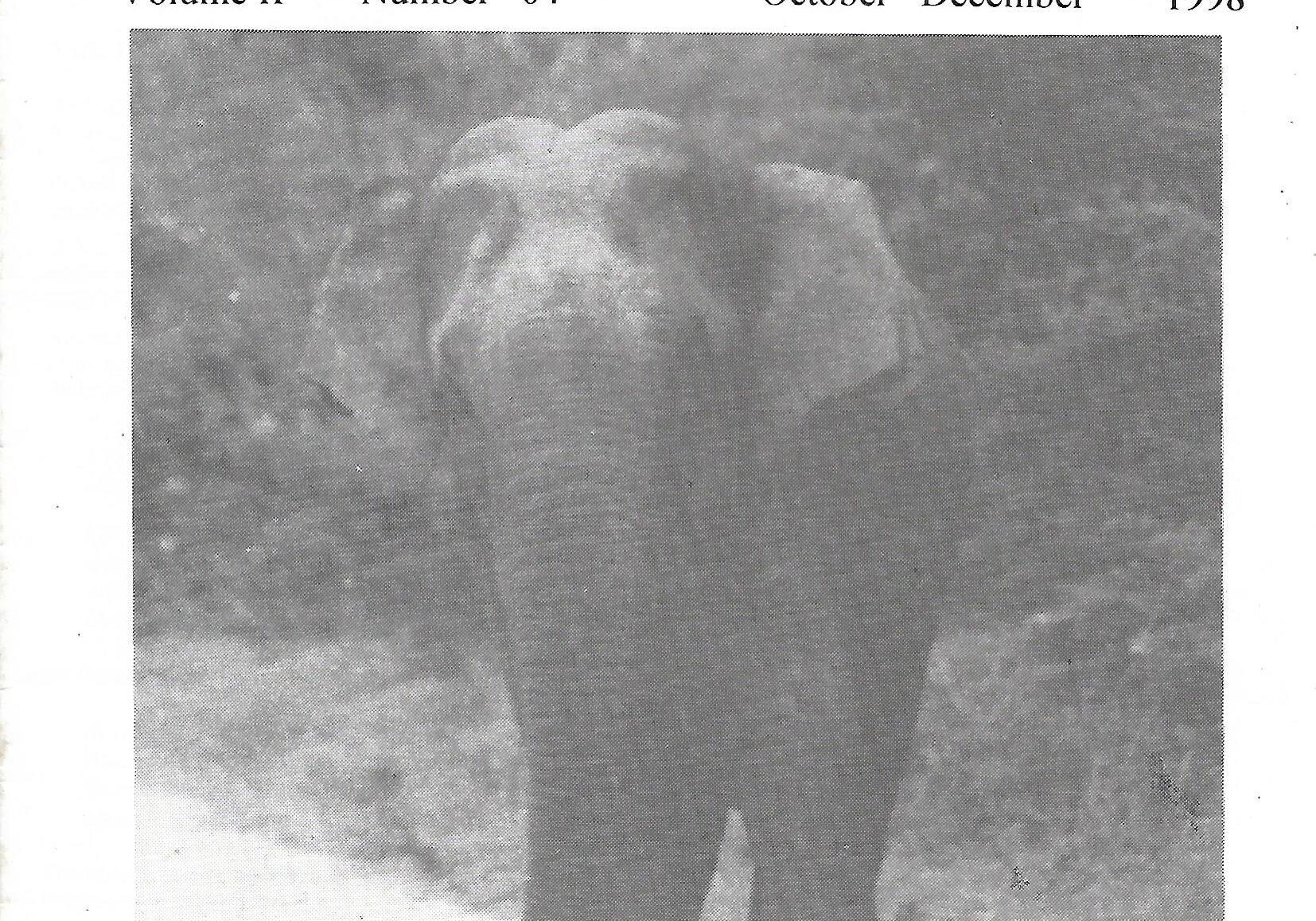 naturalist 1998 vol 2 no 4 p1