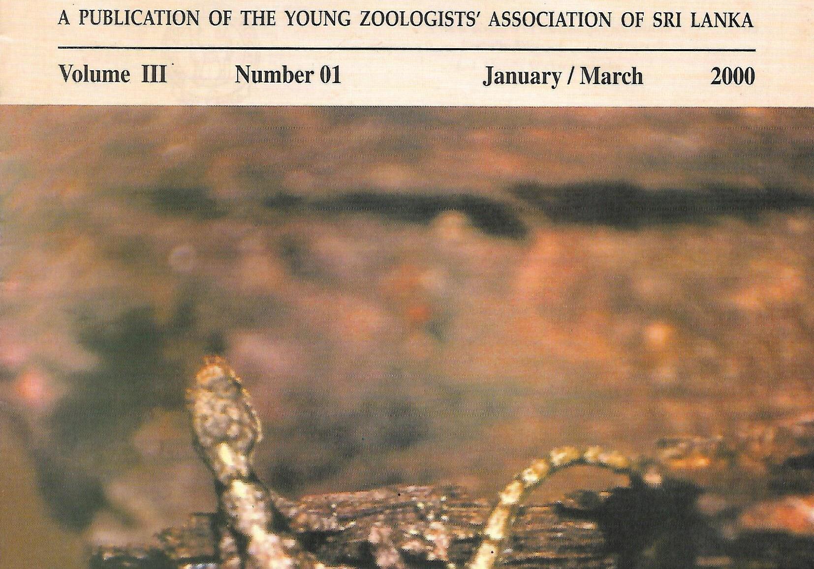 naturalist 2000 vol 3 no 1 p1