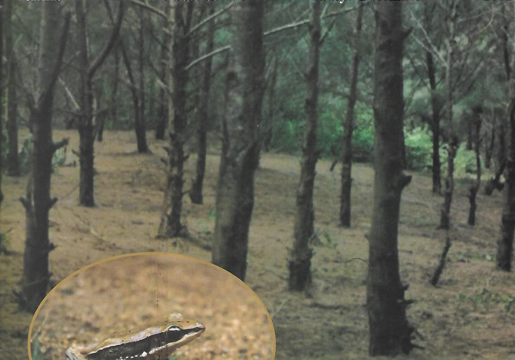 naturalist 2002 vol 5 no 3-4 p1